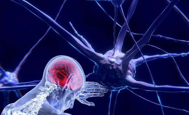 http://www.clinicafisioterapiaelche.com/neuromodulacion-fisioterapia-poco-invasiva/